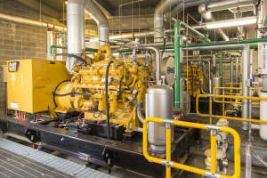 Control Solutions for Cogeneration Systems
