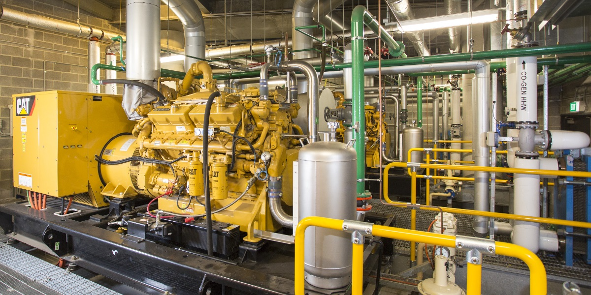 Cogeneration Systems CAT
